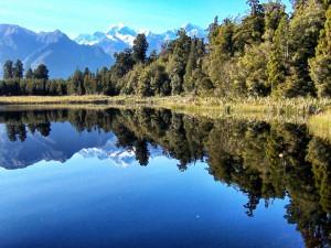 Lake_Matheson_turnagain