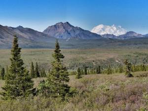 denali_turnagain_nationalpark_alaska