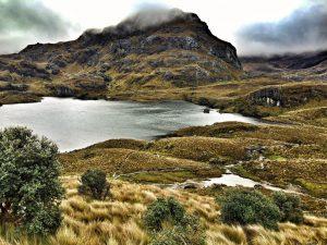 Cajas_Nationalpark_ecuador_turnagain