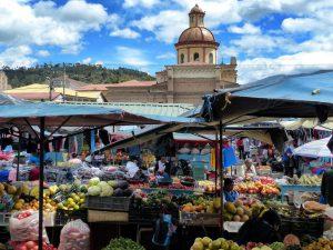 Ecuador_turnagain_Market