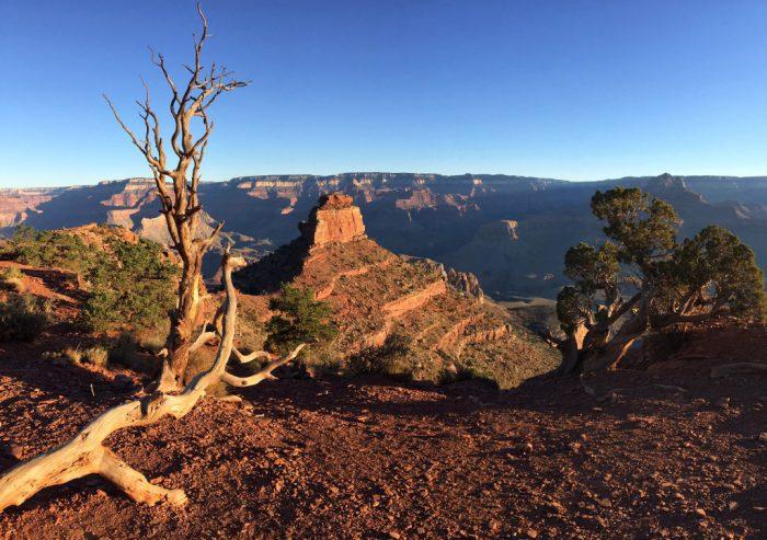 grand_canyon_south_rim_arizona_turnagain