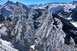 Das Edelweiss, Salzburg Mountain Resort